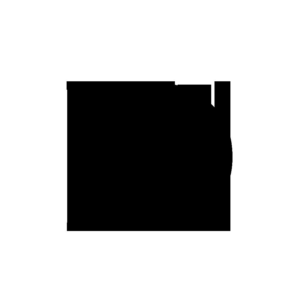 Daniel Sundgren Logo
